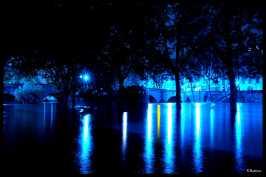 crue-en-bleue-pont-marie