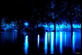 Crue en bleue Pont Marie